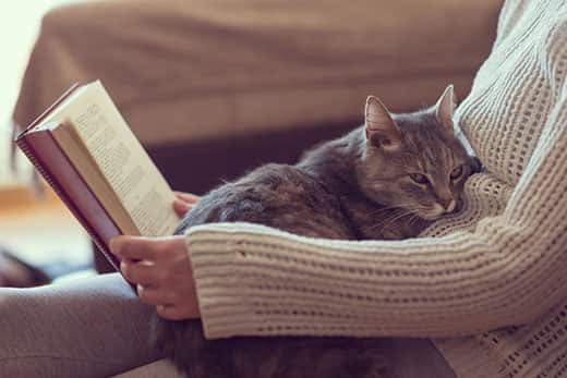 Cat laying on woman's lap while she reads a book.